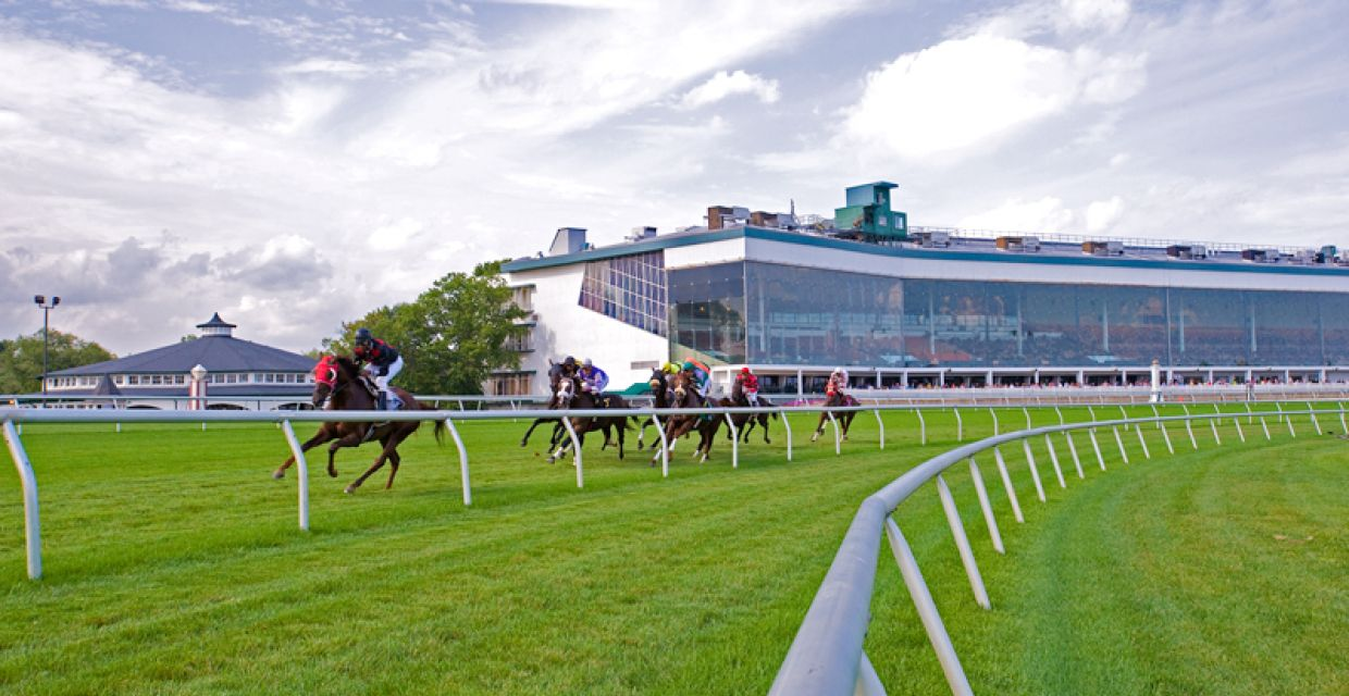 Laurel turn 02